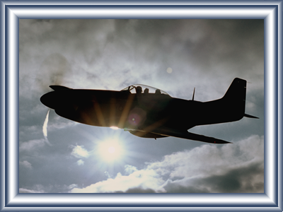 mustang-joy-flights - sun behind.png