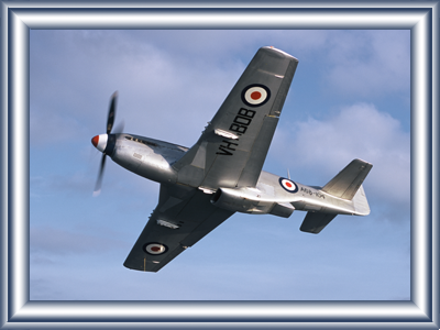 mustang-joy-flights3.png